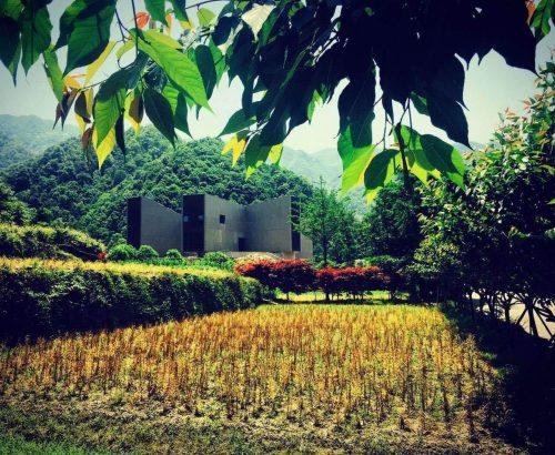 Dove arte, storia e natura si incontrano: il nuovo Ningbo Duao Art Museum